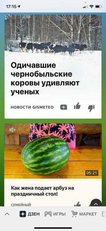 Дзен в Яндекс.Браузере на ios